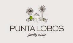 Vinho Punta Lobos Honesto desembarca no Rio