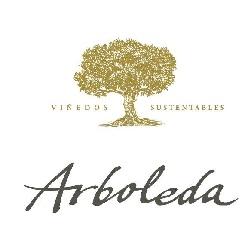 Aconteceu… Winebar com vinhos da vinícola chilena Arboleda – Carmenère 2011