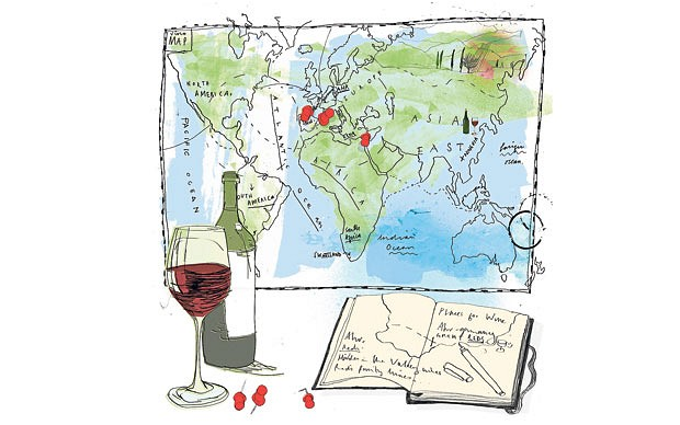 Maneiras de explorar o admirável mundo do vinho