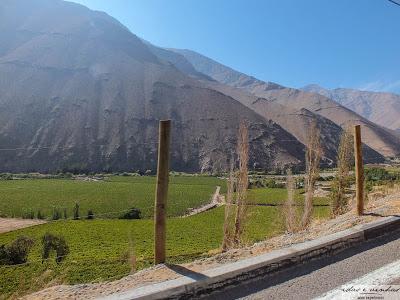 Enocuriosos… Viñas de Chile – Cavas del Valle