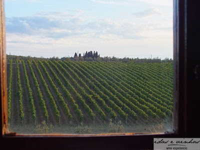 Enocuriosos no Velho Mundo… Itália: Castello Il Palagio