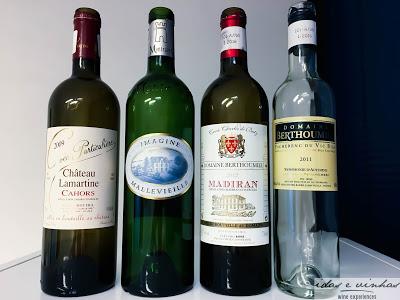 Vinhos do Sudoeste da França