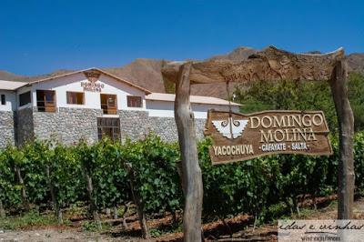 Em busca do Torrontés perfeito… Domingo Molina Torrontés 2015